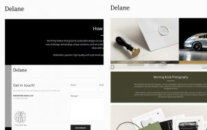 Delane_Contented_content_referentie_website