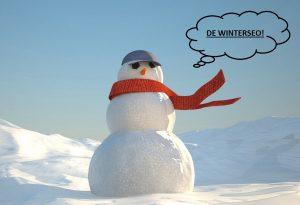 SEO_Winter_Apeldoorn_tekstschrijver